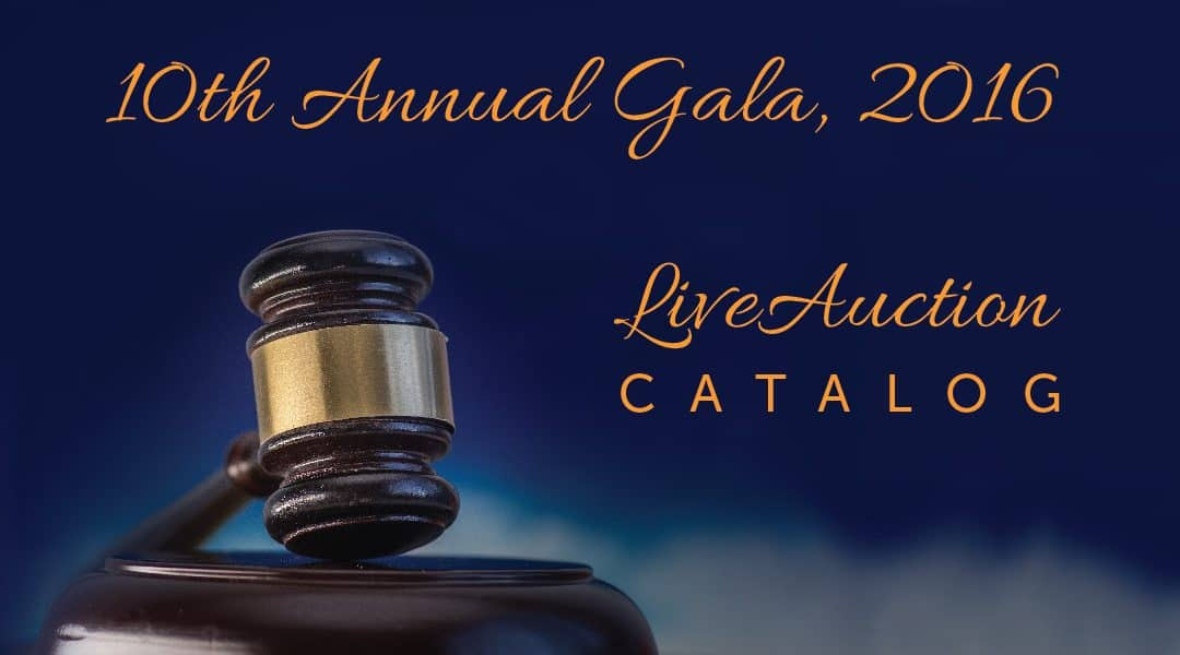 Auction Catalog for 10th Annual Gala