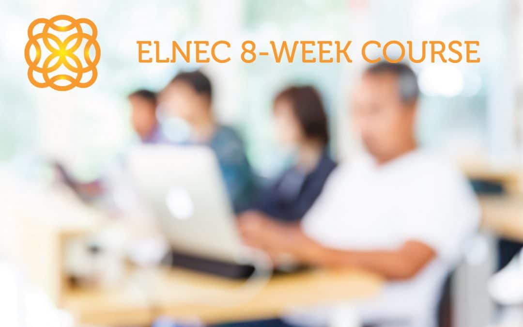 PROFESSIONAL DEVELOPMENT OPPORTUNITY – ELNEC