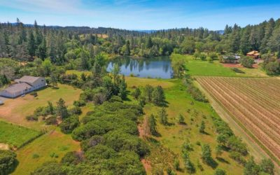 Angwin: A New Village Frontier