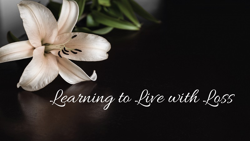 Learning to Live with Loss – Calistoga